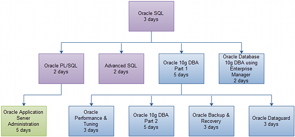 Oracle 10g Database Administrator Certification Track