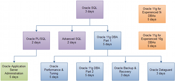 Oracle 11g Database Administrator Certification Track